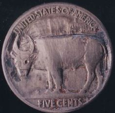 John Dorusa - Water Buffalo - Coin: 1935-P (VG) Water Buffalo, Coin Collecting, Coins, Carving, Animals, Animales, Rooms, Animaux, Wood Carvings