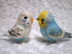 Budgies are Awesome: October 2011 eagle owls of paradise birds
