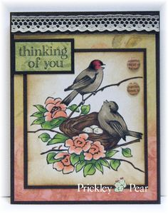 Prickley Pear Rubber Stamps: Nesting Finch