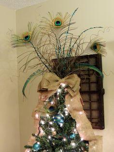 2013 Peacock Tree