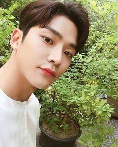 Joon Hyuk, Chani Sf9, Art Jokes, Korean Actors, Boy Groups, Fantasy, Instagram Posts, Kpop Boy, Boys