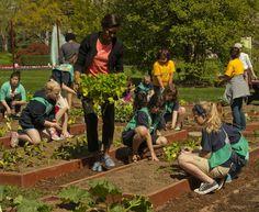 Mrs. O hosting the annual White House kitchen garden planting.