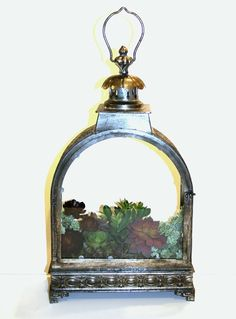 Succulents in Pewter Lantern Artificial Succulents, Pewter, Lanterns, Contemporary, Christmas Ornaments, Mirror, Holiday Decor, Color, Design