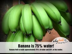 Banana fruit is made approximately of water and of dry matter. Amazing Food Facts, Banana Facts, Banana Fruit, Good To Know, Fun Facts, Water, Google Search, Banana, Gripe Water