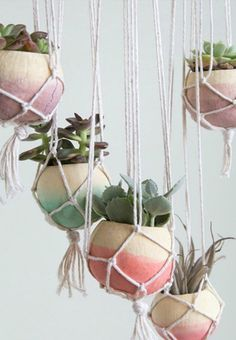 These DIY Plant Hangers Are the Chicest Way to Display Your Succulents