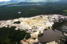 Geenpeace: East Asia Mining Dibalik Rencana Alih Fungsi Hutan Lindung Aceh