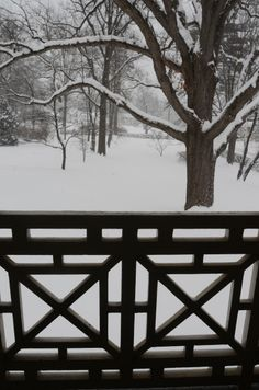 February snowstorm, from the Homestead porch. The Emily Dickinson Museum. Amherst, MA.