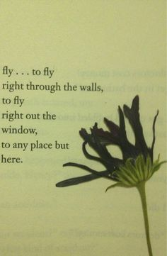 fly... to fly right through the walls, to fly right out the window, to any place but here. - Henry Charles Bukowski