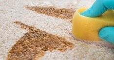 Chemical floor cleaners are harsh and can be harmful to your kids, pets, and even to the floors themselves! Try these DIY floor cleaner recipes for a naturally disinfected floor. Floor Cleaner Recipes, Diy Floor Cleaner, Diy Carpet Cleaner, Best Drain Cleaner, Natural Floor Cleaners, Removing Carpet, Stain Remover Carpet, Stain Removers, Tea Stains
