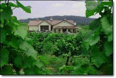 Pearmund Cellars - Broad Run, VA Fauquier County, Va http://www.pearmundcellars.com