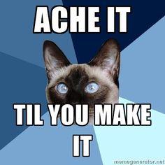 af4ea647f014e99b813ed78a6fad41f8 chronic illness humor chronic pain chronic illness cat nsaids resized_chronic illness cat meme,Chronic Illness Cat Meme