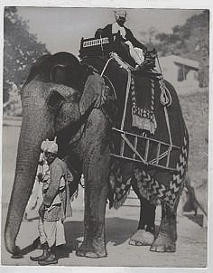Old Indian Photos Portraits Victoriens, Elephant Illustration, Age Of Empires, History Of India, Vintage India, Elephant Design, Exotic Pets, Exotic Animals, Animal Totems