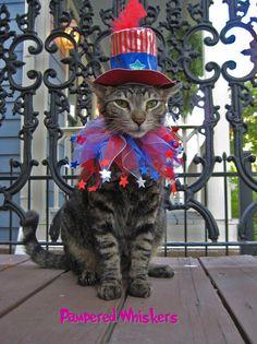 Very patriotic