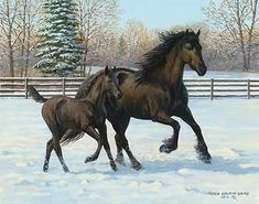 'Friesian Frolic' by Persis Clayton Weirs Original Paintings