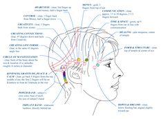Access Consciousness® (Accéder à la Conscience). Un ensemble d'outils énergétiques verbaux et corporels de développement personnel, ...