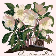 All Floral Needlepoint Canvases - Needlepoint.Com Christmas Rose, Christmas Colors, Needlepoint Kits, Needlepoint Canvases, Cross Stitch Flowers, Cross Stitch Patterns, Victorian Cross Stitch, Tapestry Kits, Hand Painted Canvas