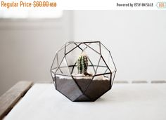 """planteur de """"icosidodécaèdre"""" - terrarium en verre à la main - terrarium verre géométriques pour le jardinage d"""