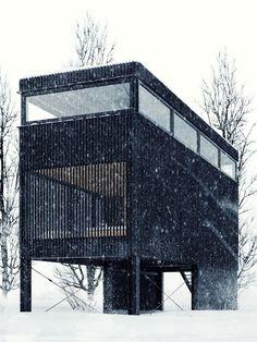 Black Home in Poland