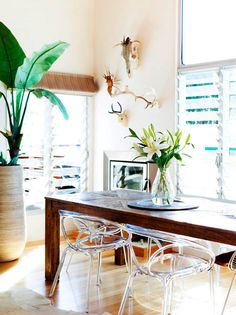 lucite chairs, wood table, accessories and botanicals Fashion blogger Mandy Shadforth's house for Real Living Magazine. Photo Toby Scott