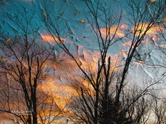 Winter Sky by Julie Everhart on 500px
