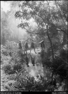 Harold Cazneaux (Australian photographer) (:1934 :Stepping stones Frensham Bushland. NSW Sydney Australia