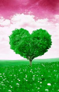 Tree Of Love Nature Hd Photos Nature Hd Photoshop Images Nature