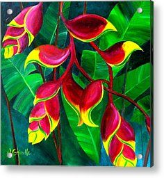 abstract tropical flower