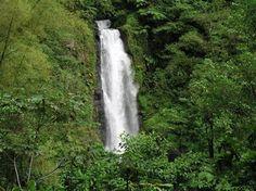 Roseau, Dominica: Trafalgar Falls, Dominica