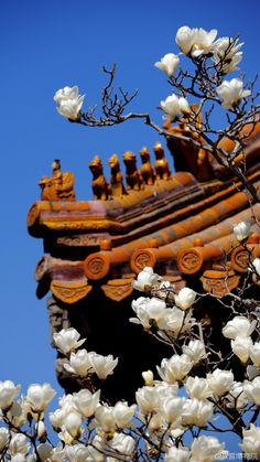 Decorative figurines on the roof ridge of a royal hall in Forbidden City for the purpose of warding off harmful energy flow Pagoda Temple, Oriental, Asian Architecture, Unusual Homes, Great Wall Of China, Beijing China, China Travel, Chinese Art, Chinoiserie