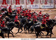 rcmp-musical-ride-32-member-daily-equestrian-performance-do-their-cxrwcn.jpg (640×458)