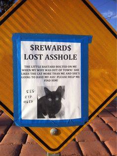 I found this near where I live