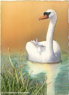 "Barbara Groenteman - Work Zoom: ""Reflecting"" (Mute Swan)"