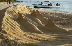 Image result for dolphin sand sculpture