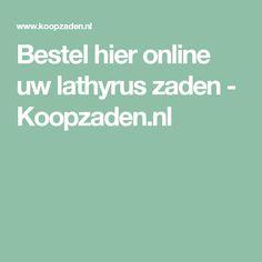 Bestel hier online uw lathyrus zaden - Koopzaden.nl