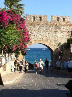 See 814 photos and 48 tips from 8805 visitors to Λιμάνι Ρόδου (Rhodes Port). Kusadasi, Greece Rhodes, Myconos, Best Greek Islands, Destinations, Le Palais, Bougainvillea, Running Away, Rhode Island
