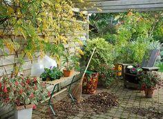 Calendrier de septembre : Nettoyer, replanter, aménager, prévoir le printemps etc. Comment prendre soin de son jardin en septembre