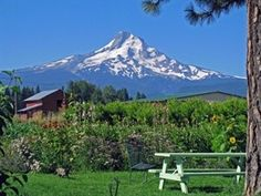 Blog post: profile of Draper Girls Country Farm, located in Parkdale, Oregon