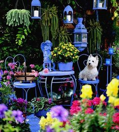 Include Your Dog outdoor-spaces