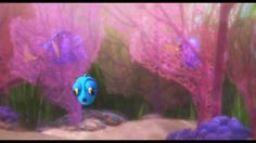 Screencap Gallery for Finding Dory Bluray, Disney, Pixar). Dory is a wide-eyed, blue tang fish who suffers from memory loss every 10 seconds or so. Disney And Dreamworks, Disney Pixar, Walt Disney, Dory Finding Nemo, How Old Am I, Dragon Crafts, Bad Memories, Fan Art, Memes