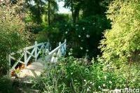 Visite : le jardin d'ombre d'Anne Marie