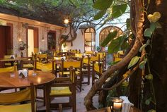 Guido's Restaurant in Cozumel.  Courtyard tucked inside, look for it.  Especially lovely in the evening.