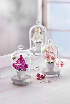 Glasglocken mit Orchidee, 3er Set bestellen | weltbild.de