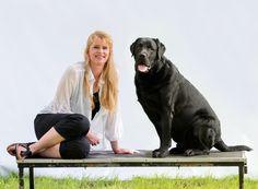 My love!!!! Labrador Retriever, Dogs, Animals, Labrador Retrievers, Animales, Animaux, Pet Dogs, Doggies, Animal
