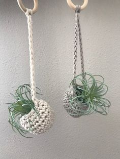Mini air plant hanger, Air plant holder, Crocheted Airplant Hanger, Boho Decor - All For Herbs And Plants Crochet Plant Hanger, Macrame Plant Holder, Macrame Plant Hangers, Plant Holders, Air Plant Display, Crochet Supplies, Macrame Design, Macrame Projects, Hanging Plants