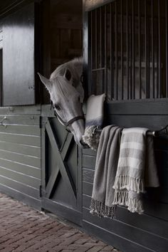 The most important role of equestrian clothing is for security Although horses can be trained they can be unforeseeable when provoked. Riders are susceptible while riding and handling horses, espec… Dream Stables, Dream Barn, Horse Stables, Equestrian Decor, Equestrian Style, Horse Barn Designs, Horse Love, Horse Riding, Beautiful Horses