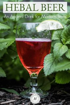 Beer: An Ancient Drink for Modern Times – Herbal Academy Herbal Beer: An Ancient Drink for Modern Times Homemade Wine Recipes, Homemade Alcohol, Homemade Beer, Beer Recipes, Alcohol Recipes, Herb Beer Recipe, Fireball Recipes, Easy Alcoholic Drinks, Vegan Recipes