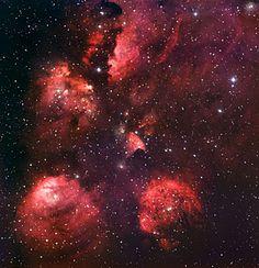 The Cat's Paw Nebula*