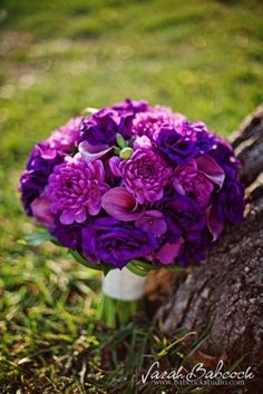 Modern Romantic Rustic Vintage Purple Bouquet Fall Spring Summer Wedding Flowers Photos & Pictures - WeddingWire.com