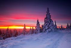 Winter sunrise in Karkonosze Mountains, Czech Republic. Dark Winter, Winter Beauty, Winter Colors, Winter Solstice, Morning Light, Winter Wonderland, Mountains, Pictures, Photos