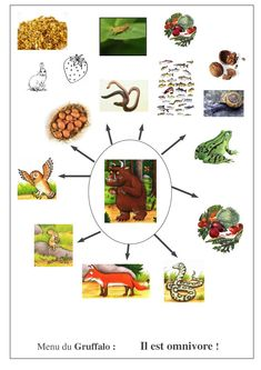 réseau alimentaire